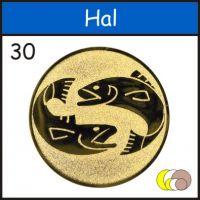 b_200_0_16777215_00_images_erem_betet_hal30.jpg